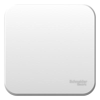 Schneider Electric Blanca Белый Переключатель 1-клавишный накладного монтажа с изолирующей пластиной 10A 250B купить в интернет-магазине Азбука Сантехники