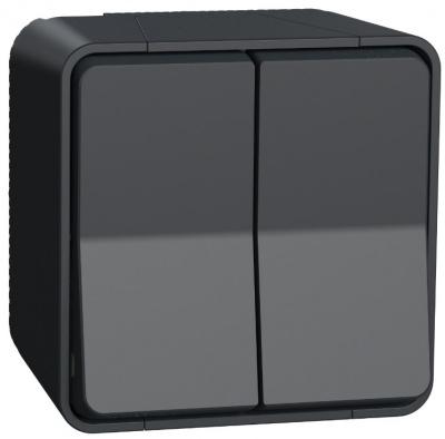Schneider Electric Mureva Styl Антрацит Переключатель 2-клавишный на 2 направления сх. 6+6 открытой устан. IP55 купить в интернет-магазине Азбука Сантехники