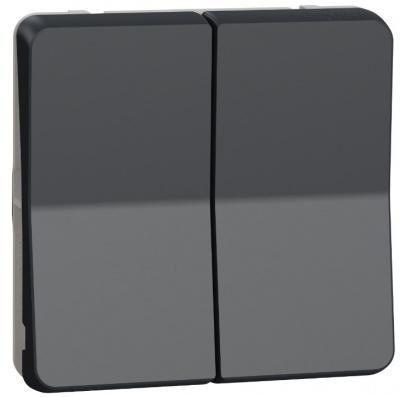 Schneider Electric Mureva Styl Антрацит Переключатель 2-клавишный сх. 6+6 IP55 купить в интернет-магазине Азбука Сантехники